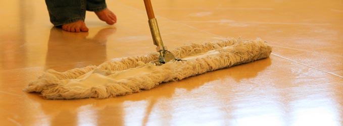 Métodos de limpieza de suelos
