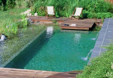 Limpieza de piscinas para el verano 2016 for Piscina filtro natural