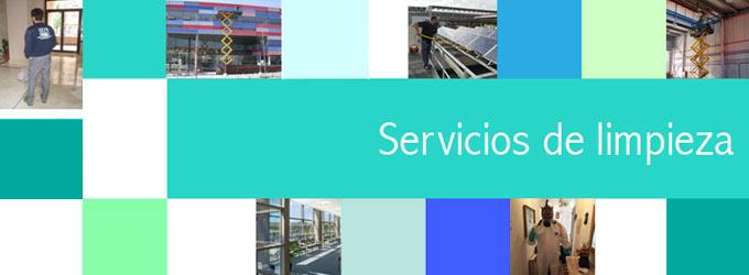 ¿Qué servicios ofrece una empresa de limpieza?