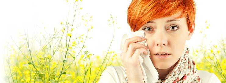 La limpieza y las alergias