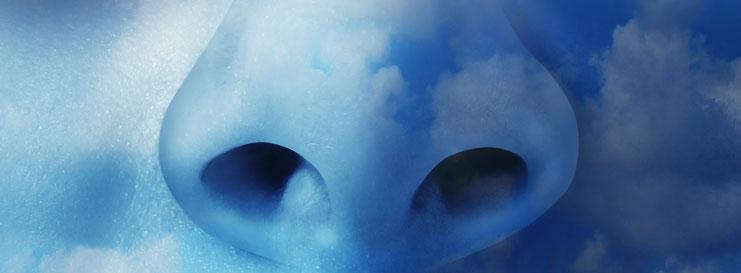Aplicaciones de la limpieza con ozono