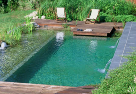 piscina con filtro biologico