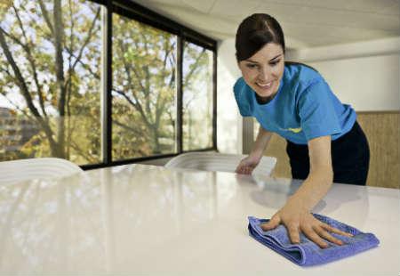 limpieza de polvo domestico
