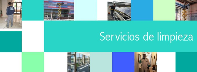 Servicios que Ofrece una Empresa de Limpieza - Geindepo