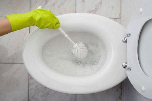 linmpieza ecológica de inodoro