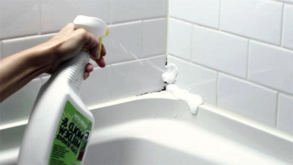 productos para eliminar el moho de las juntas