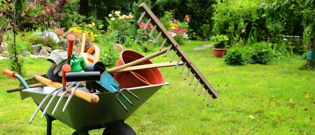 Limpieza del jardín de la comunidad en verano