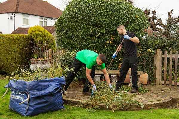 limpieza del jardín de una comunidad