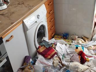 Empresa de limpieza en Madrid para Diógenes