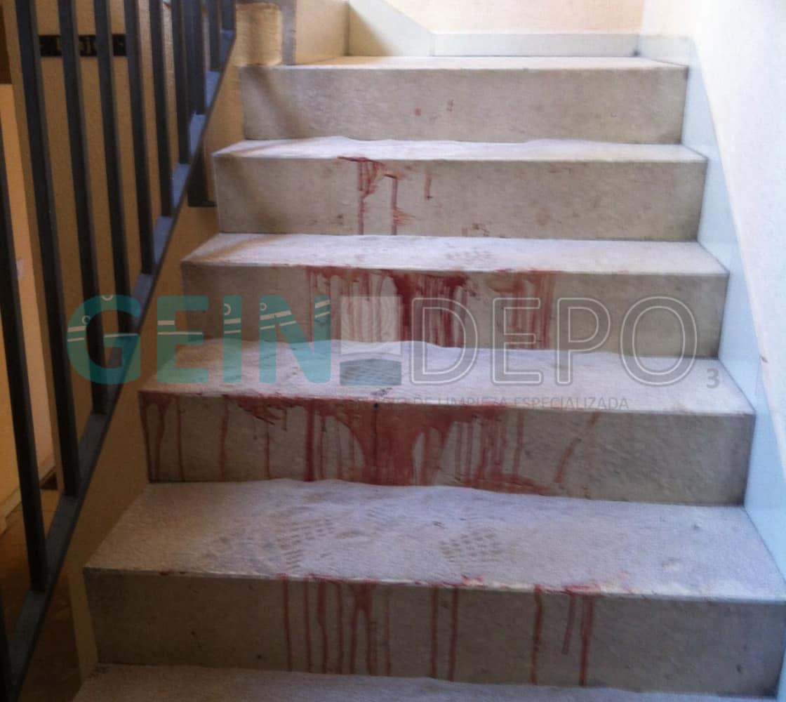 Escaleras antes de limpieza por fallecimiento.