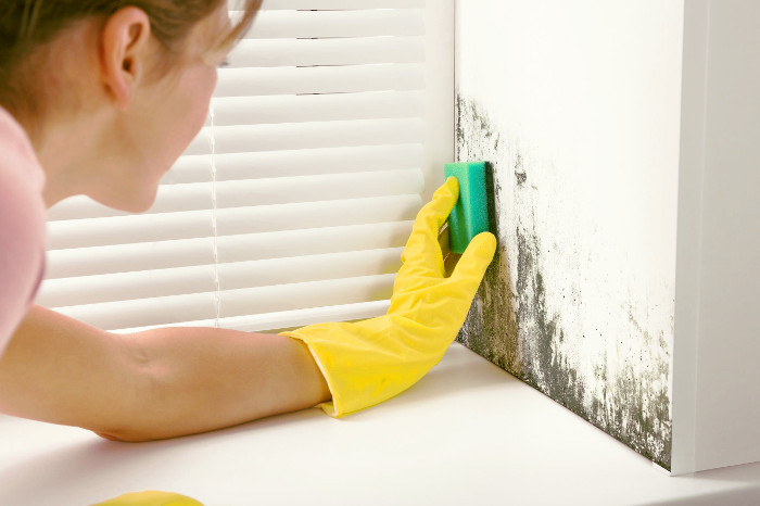 Mujer limpiando el moho de la pared de un piso