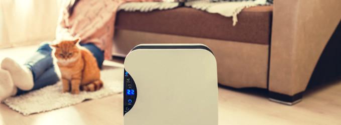 Para qué sirve un purificador de aire en el hogar