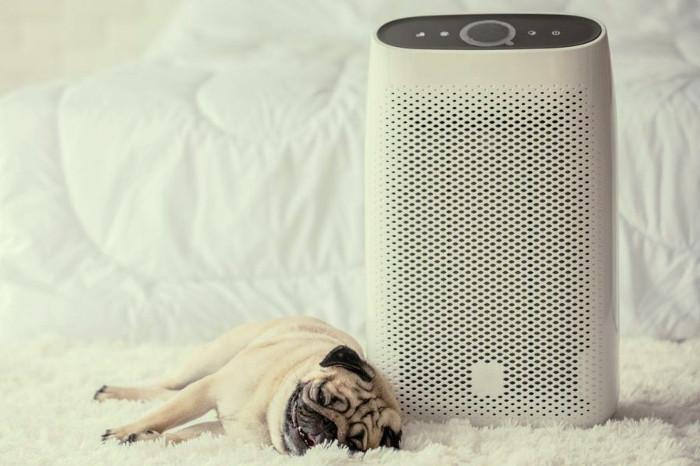 Tipo de purificador de aire con filtro hepa